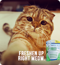 Freshen up right meow.
