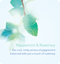Peppermint and rosemary. The cool, minty aroma of peppermint balanced with just a touch of rosemary