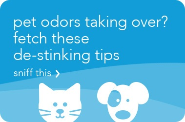 GUIDE TO ELIMINATING PET ODOR