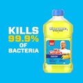 Mr Clean Antibacterial Cleaner with Summer Citrus Dirt Grease and Grime
