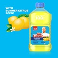 Mr Clean Antibacterial Cleaner with Summer Citrus Dilutes