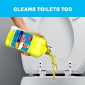 Clean Toilets Too
