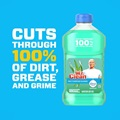 Mr Clean Multi Purpose Cleaner With Febreze Meadows and Rain Dirt Grease and Grime